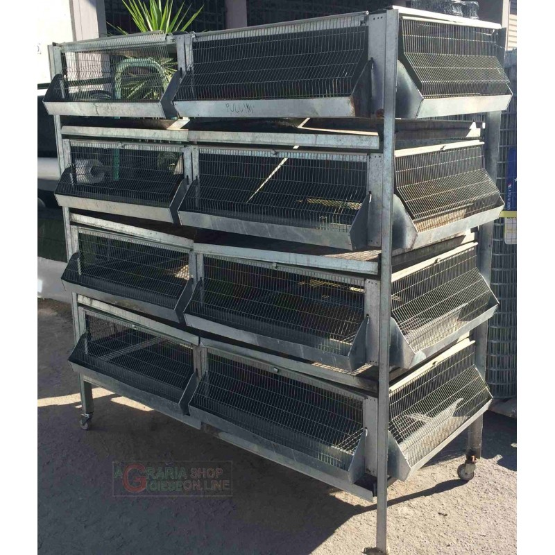 BATTERY CAGE FOR CHICKS CHICKENS HENS PHARAOHS FGGIANI QUAIL
