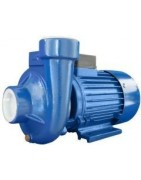 Submersible electric pumps for wine and oil transfer